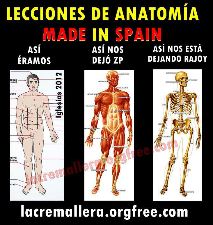 Lecciones de anatomía Made in Spain
