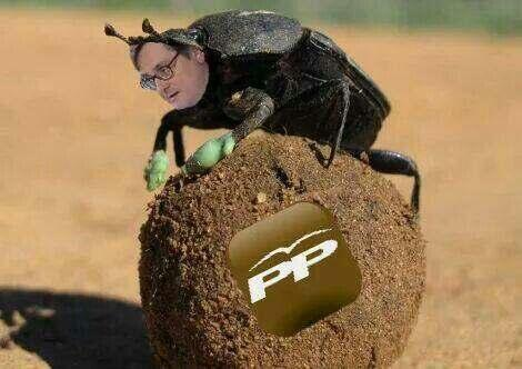 El pelotero del PP