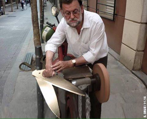 Mariano trabajando